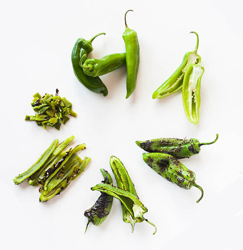 Hatch Chile Life Cycle